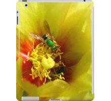 Aughochlora Sweat Bee iPad Case/Skin