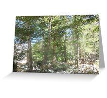 spirit of trees Greeting Card