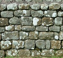 Hadrian's Wall Close-up by Richard Winskill