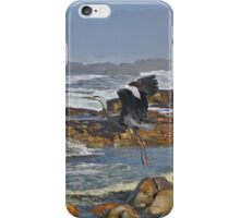 Rocky shores and a flying Heron iPhone Case/Skin