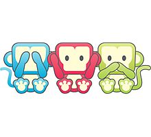 3 wise monkeys Photographic Print