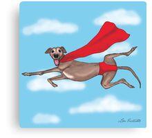 Adopt a Super Hero! Canvas Print