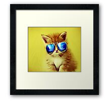 Cute Kitty with Sunglasses Framed Print