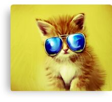 Cute Kitty with Sunglasses Canvas Print
