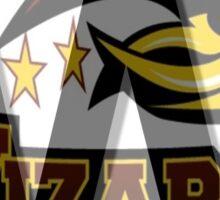 Windsor Wizards Big W Sticker