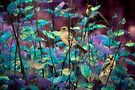 Sparrows in infrared by missmoneypenny