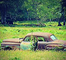 Rusty Car by kchase