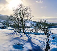 Winter light in Wharfedale by Dan Shalloe