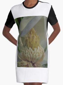 Nectar Graphic T-Shirt Dress