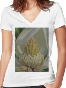 Nectar Women's Fitted V-Neck T-Shirt