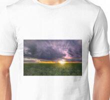 Passing Fancy Unisex T-Shirt