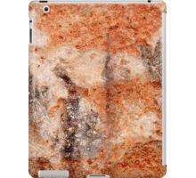 Desert Spirits iPad Case/Skin