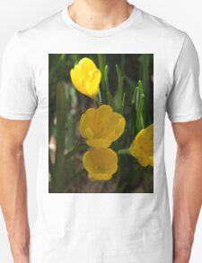 Ist Crocus T-Shirt