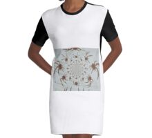 Spider-Arachnid-Creepy  Graphic T-Shirt Dress