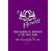 the flower that blooms in adversity  Photographic Print
