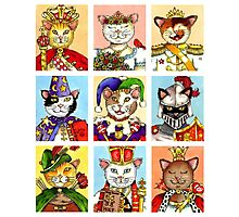 The Royal Court of Cats Photographic Print