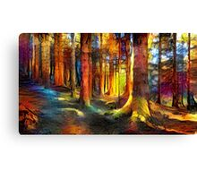 Forest Trail Canvas Print