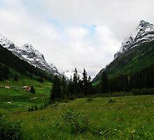 Verwall Valley by heinrich