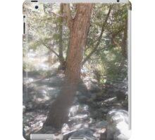 more spirits iPad Case/Skin