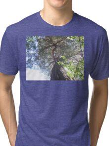 dancing tree Tri-blend T-Shirt