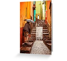 Slippery When Wet - Guanajuato, Mexico Greeting Card