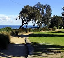 Hampton foreshore reserve  Victoria  Australia by bayside2