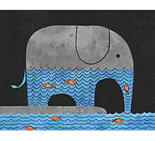 Thirsty Elephant  Photographic Print