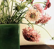 Pink Scabiosa, Green Vase by Barbara Wyeth