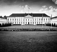 Bellevue Palace by novopics