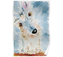 Hamish The Scottie Dog Poster