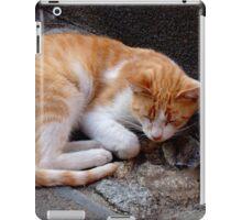 Afternoon Nap iPad Case/Skin