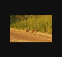 Mother And Baby Rabbit                                 Pentax X-5 16 MP Unisex T-Shirt