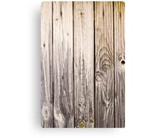 vertical view rustic wood texture old panels Canvas Print