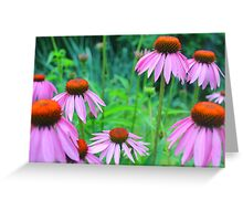 Coneflowers Near a Pond Greeting Card