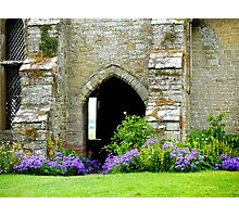 An Old Wall with an Arched Doorway Photographic Print