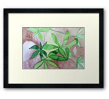 Alpine Lupin in the California Sierra Framed Print