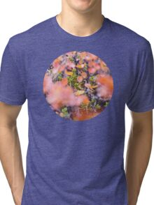 Colorful twigs Tri-blend T-Shirt