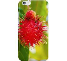 Close-up shot of a Rambutan tropical fruit in the tree iPhone Case/Skin