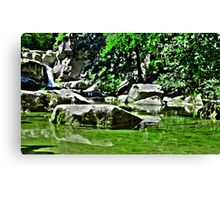 Green Mirror Canvas Print