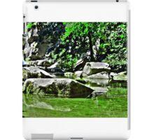 Green Mirror iPad Case/Skin