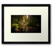 Lydford Gorge Framed Print