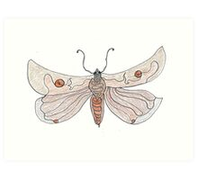 The Endangered Austyn Teal Moth (one-line #123) Art Print