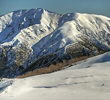 Lone skier, Bogong High Plains by Kevin McGennan