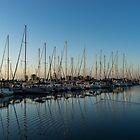 Glossy Early Morning Ripples - Bright Blue Summer at the Marina by Georgia Mizuleva