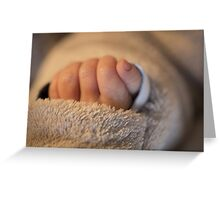 Hand of a newborn baby Greeting Card