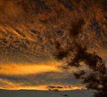 Cloud 20140710-66 by Carolyn  Fletcher