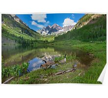 Maroon Bells Images - Canada Geese on a Summer Morning in Colorado 2 Poster