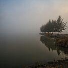 Lake Ginninderra in Canberra/Australia on a foggy morning (1) by Wolf Sverak