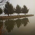 Lake Ginninderra in Canberra/Australia on a foggy morning (3) by Wolf Sverak