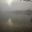 Lake Ginninderra in Canberra/Australia on a foggy morning (4) by Wolf Sverak